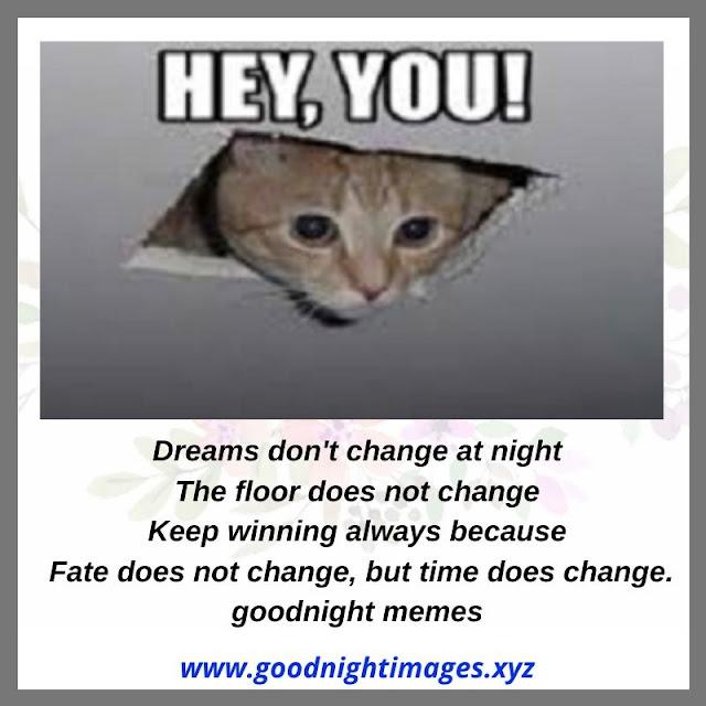 Have a Good Night Meme | funny good night Love Memes