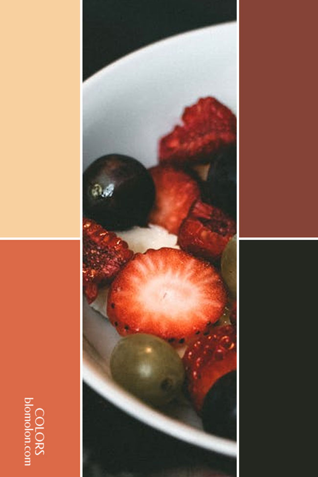 variedad_en_color_combinacion_3