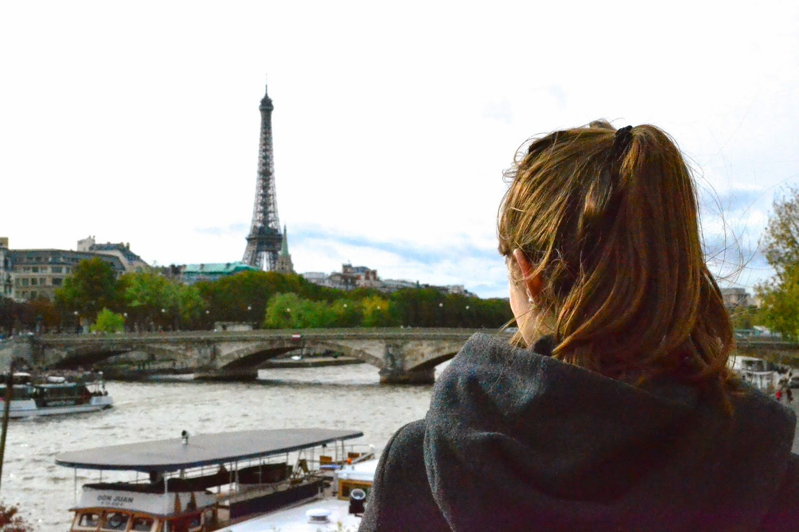 Puente the Alexander III, rio sena, paris, guia de viaje