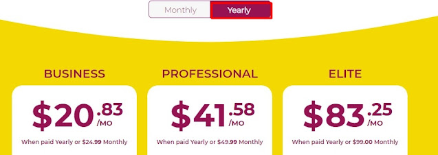 yearly plan pricing of wpx