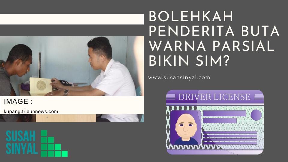 Bolehkah Penderita Buta Warna Parsial Bikin SIM?