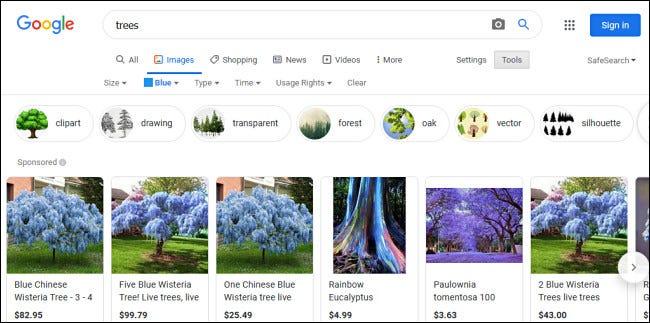 """أمثلة على الأشجار """"الزرقاء"""" في نتائج بحث صور Google."""