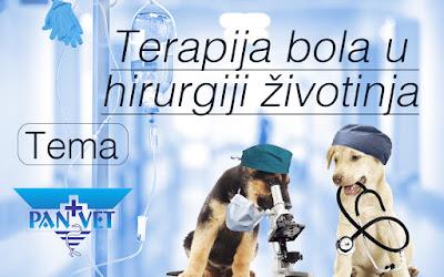 Terapija bola u hirurgiji životinja - Panvet
