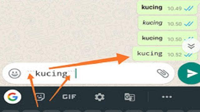 4 tampilan unik pada whatsapp