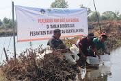 BMH Kendal Tebar 6000 Bibit Bandeng di Tambak Pemberdayaan