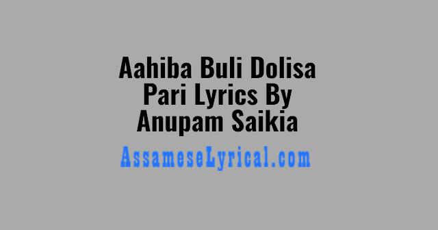 Aahiba Buli Dolisa Pari Lyrics