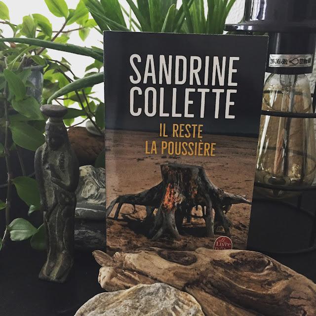 Il reste la poussière, Sandrine Collette