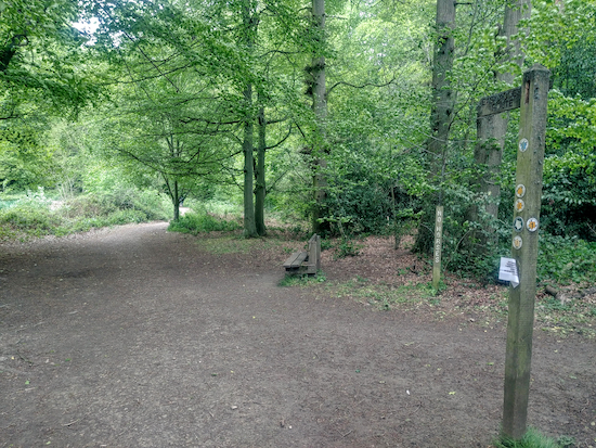 Take Chipperfield footpath 8 across the common