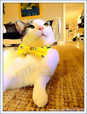 Melvyn's Totally Terrific Bow Tie Selfie  ©BionicBasil® Puzzle