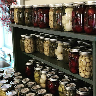 A picture of a row of mason jars filled with various canned vegetables