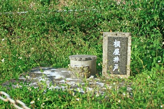 フサトモー(金満の杜) 根屋井戸の写真
