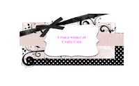 Winner at Crafty Catz Challenge Blog