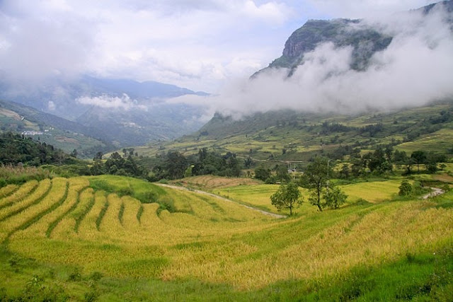 Ngắm cảnh sắc 'thiên đường' ruộng bậc thang hùng vĩ ở Y Tý Lào Cai