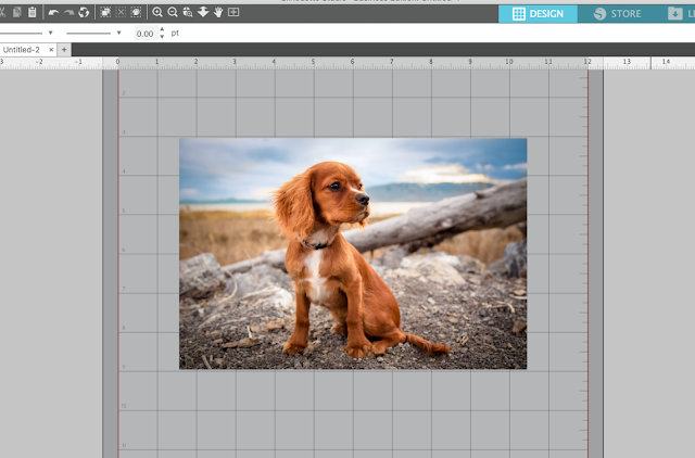 Silhouette Studio v4, tracing, trace photo, tips and tricks, edit points