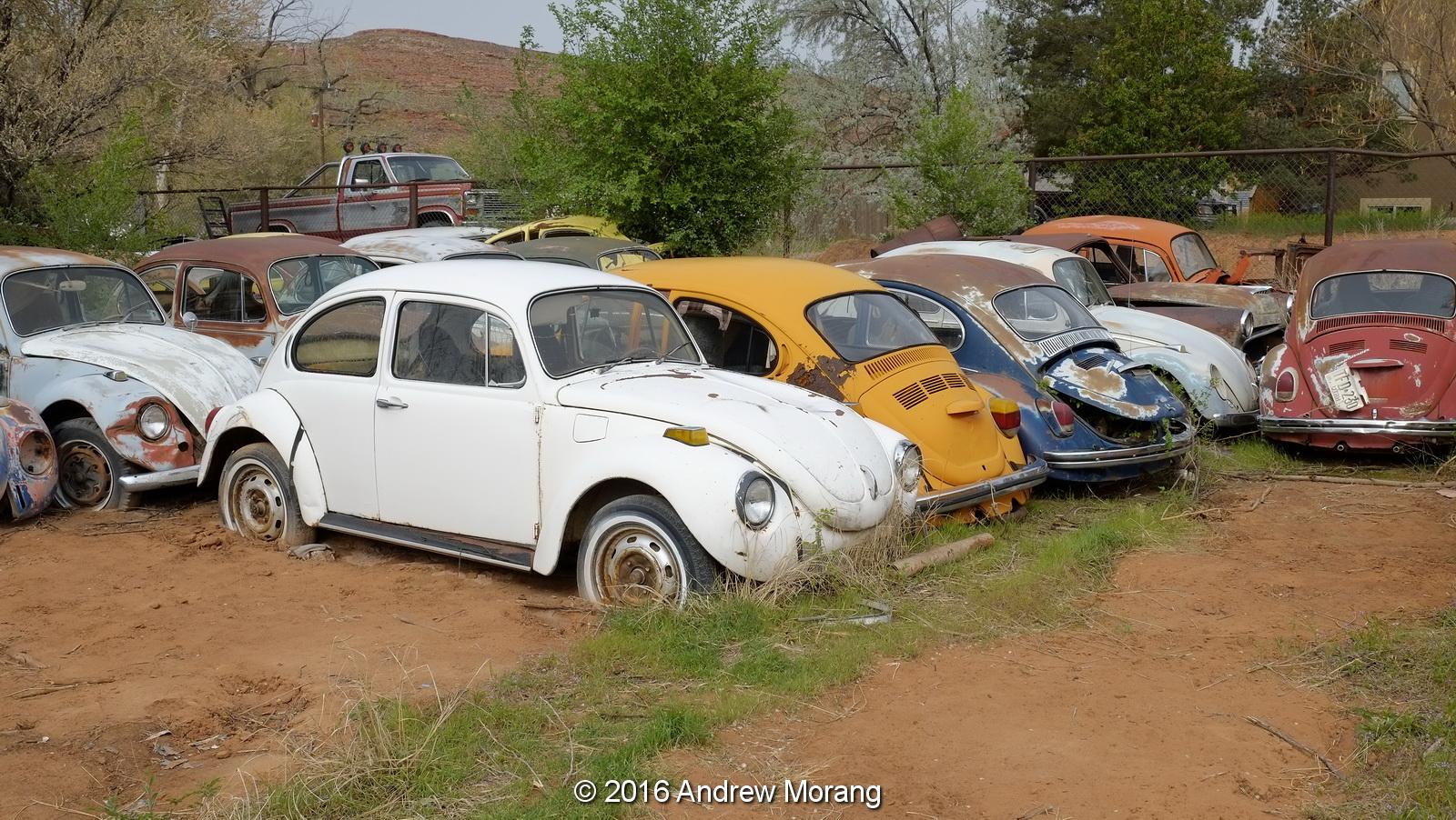 utah doublecab transporter association show vw car nation classic tag volkswagen vdub