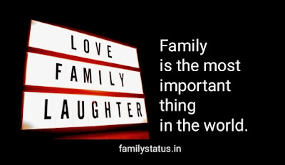 top 9 family status quotes