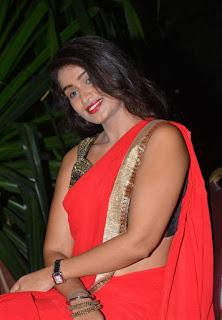 Kiran Chetavani Hot Stills in Saree 17.jpg