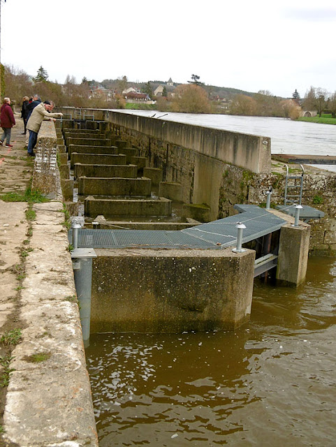 Fish ladder in the weir at the papermill, Descartes.  Indre et Loire, France. Photographed by Susan Walter. Tour the Loire Valley with a classic car and a private guide.