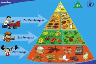 piramida makanan apa itu