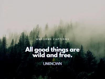 green nature quotes