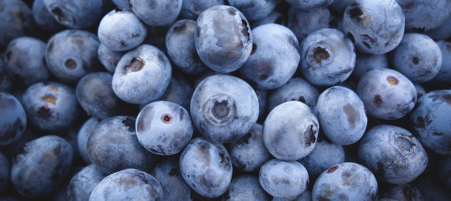 Brain food: Best healthy foods for the brain.