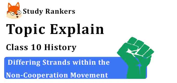 Differing Strands within the Non-Cooperation Movement - Chapter 2 Nationalism in India Class 10 History