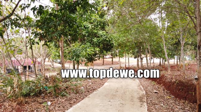 Camping ground kampung kahuripan cirangkong