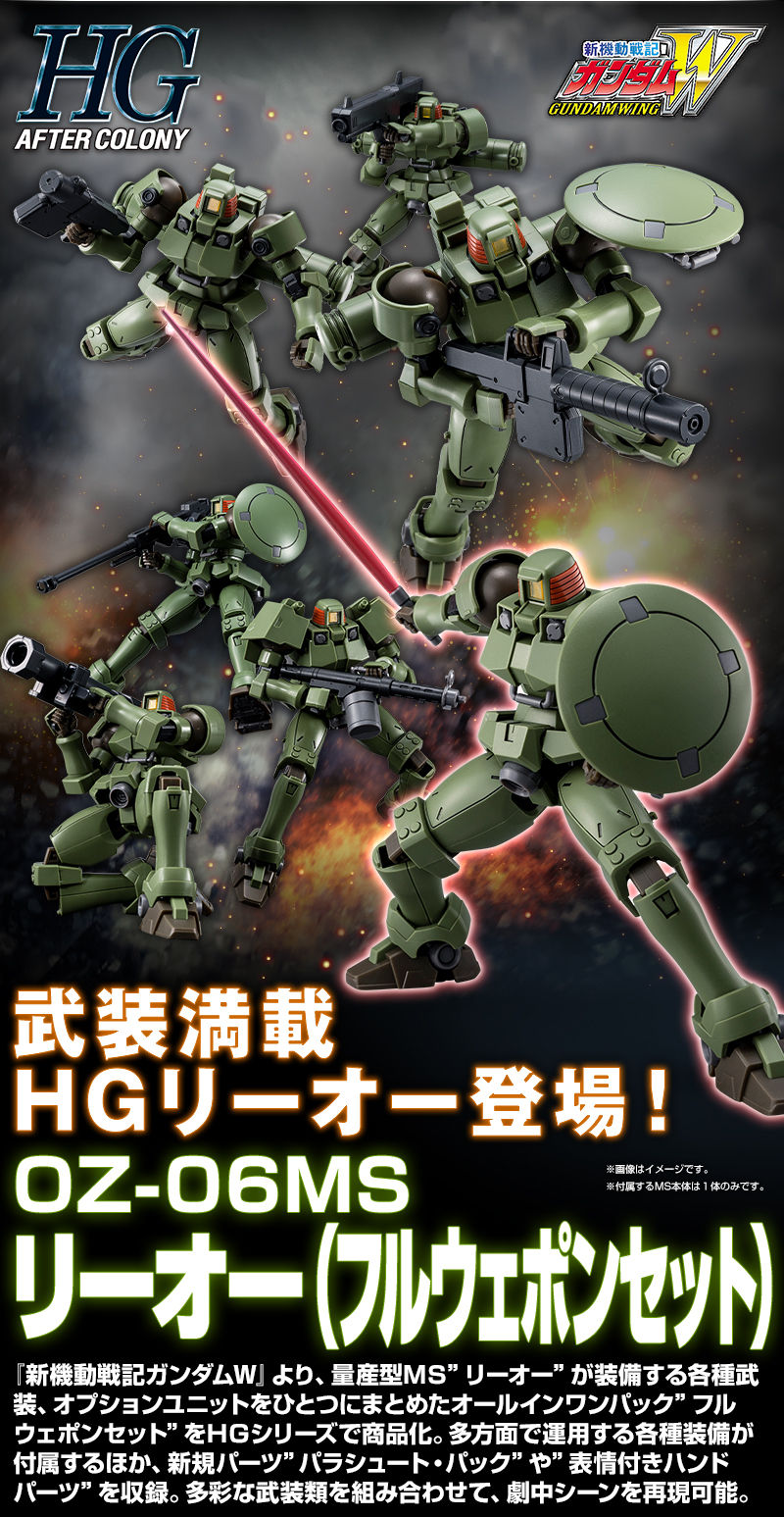 HGAC LEO FULL WEAPON SET