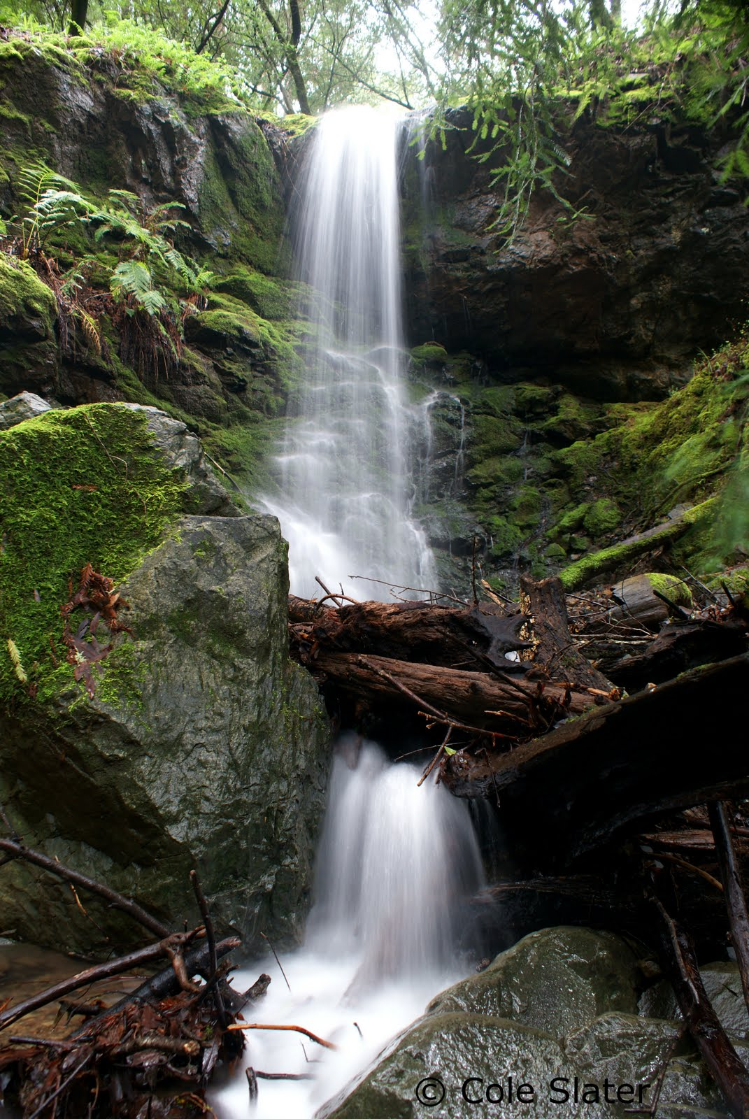 Cole's Trail Tales: Marin Waterfalls Hike