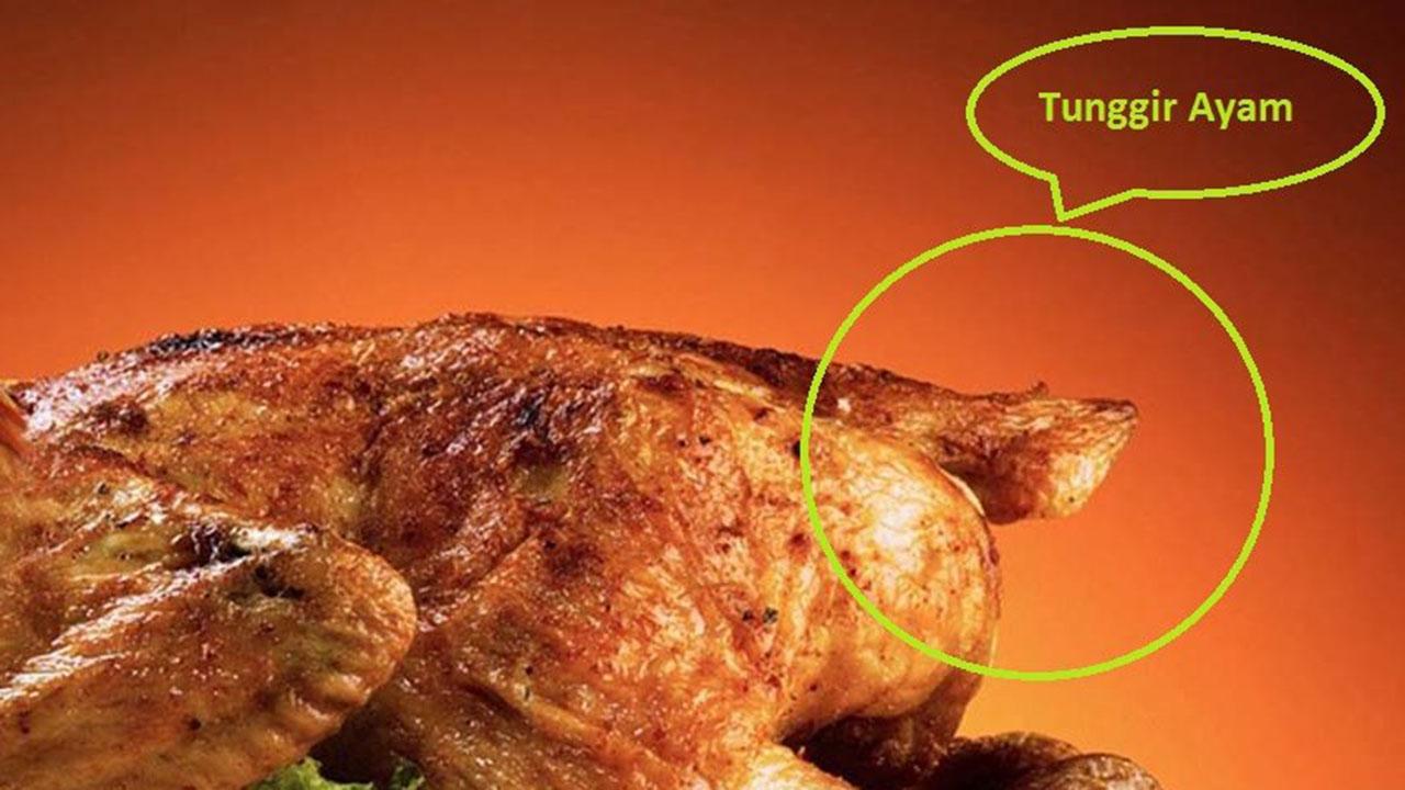 Tunggir Ayam