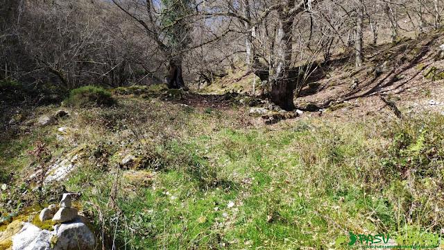Tramo intermedio del Valle de Piedrafita