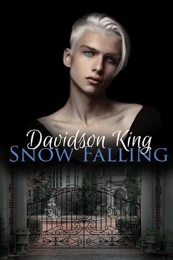 Snow Falling   Haven Heart #1   Davidson King