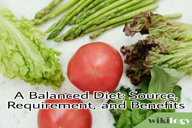 A Balanced Diet Source Requirements and Benefits