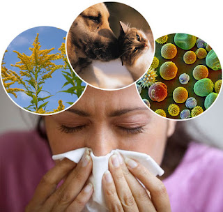 Allergy ke tips in Hindi/Urdu.