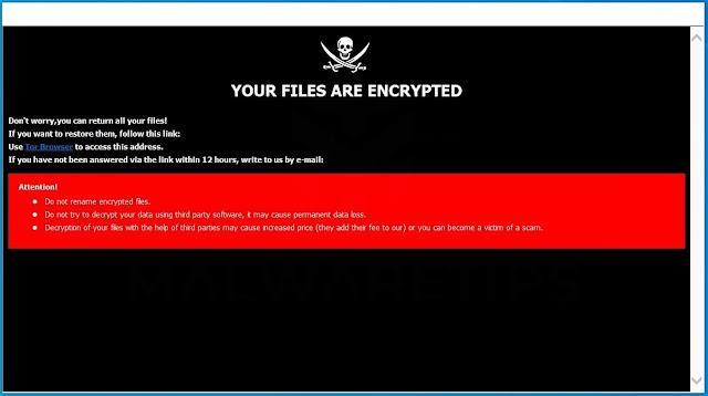 [How_decrypt@aol.com].HOW (Ransomware)