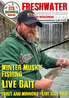 winter muskie baits rainbow trout in the spread