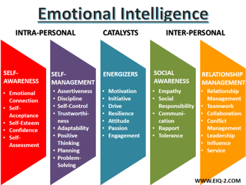 Diversity of Emotional Intelligence