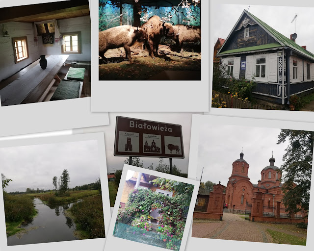Weekend w Białowieży - fotorelacja