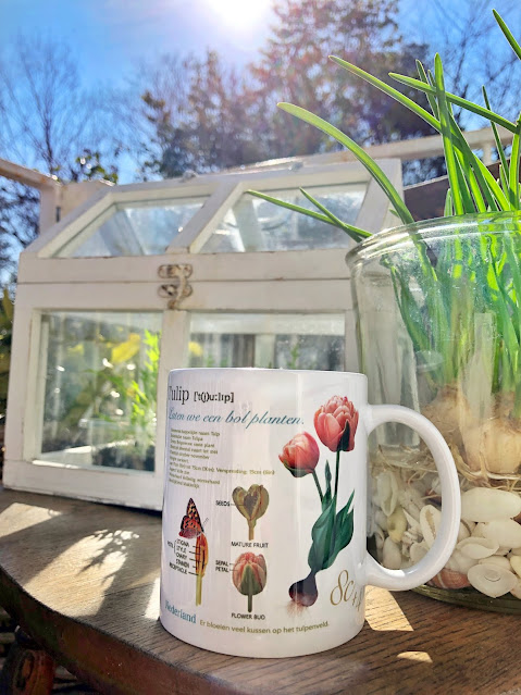 Designed a mug of tulips that were actually blooming in our garden and butterflies that were flying in the garden.