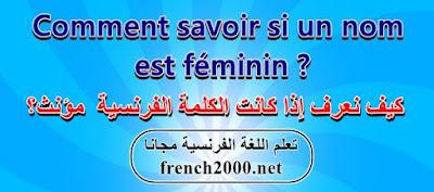 كيف تميز بين المذكر والمؤنث في اللغة الفرنسية