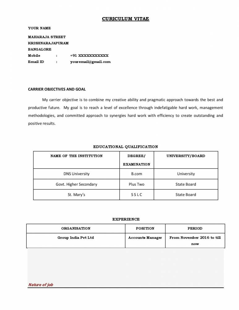 best professional accounting resume templates download now