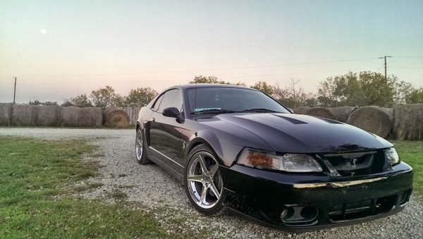 daily turismo 20k terminator 2004 ford mustang cobra. Black Bedroom Furniture Sets. Home Design Ideas
