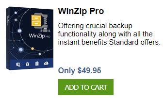 Winzip DownLoad 2021 v25.0