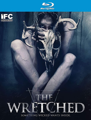 The Wretched 2019 Dual Audio BRRip 480p 300Mb x264 ESub