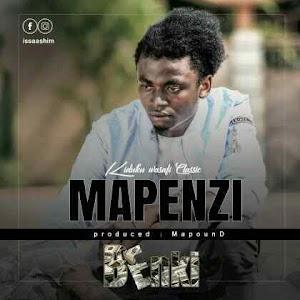 Download Mp3 | Kiduku wasafi Classic - Mapenzi