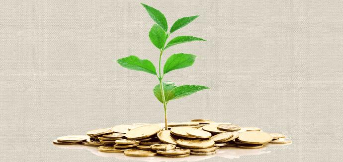 Poder Econômico é Incompatível com a Sustentabilidade.