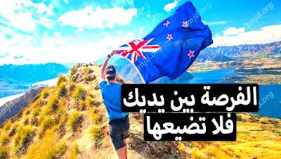 نيوزيلندا تعتزم استقبال مليون لاجئ  سارع بالتسجيل
