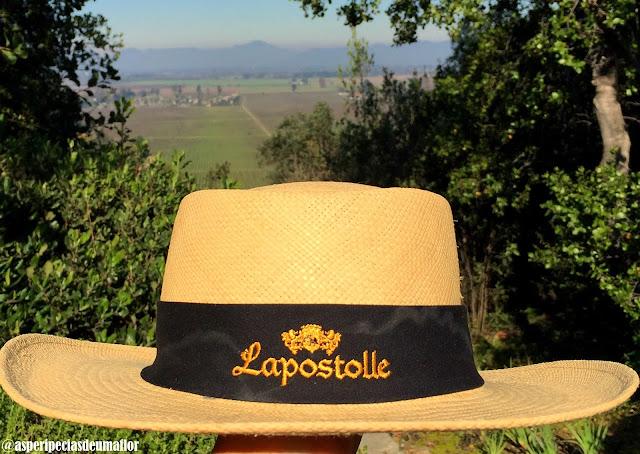 Lapostolle Residence - conforto, vinho e gastronomia em Apalta - Não Pira, Desopila