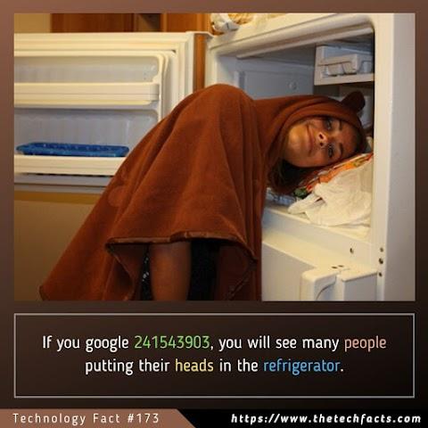 Technology Fact #173