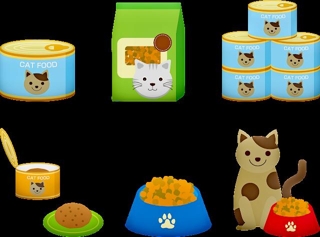 Memilih makanan khusus kucing